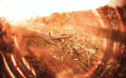 【夢占い】復縁する夢が暗示すること
